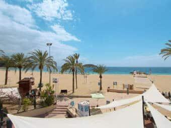 8330-apartment-beach-magaluf-e.jpg